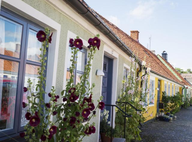 Street view of colorful and picturesque houses in simrishamn
